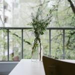 Jak hezky bydlet a nekrást? Najít byt za rozumnou cenu je problém